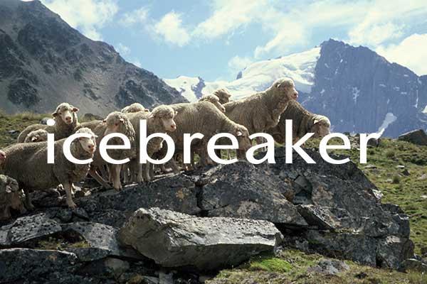 Icebreaker-Case-Study-Listing